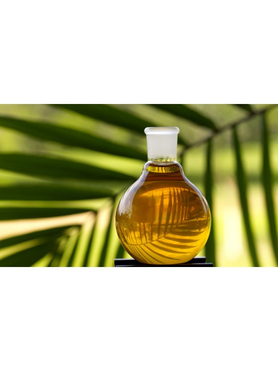 Óleo de Palma - Orgânico (Bio)