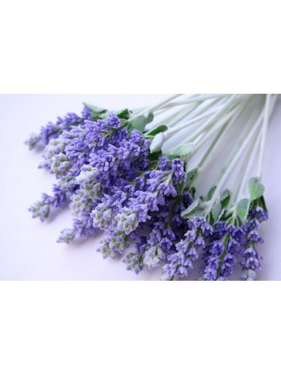 Alfazema / Lavanda - flores secas
